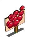 Mastery Cranberries