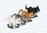 farmville cats