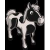 animal_horse_pinto_icon