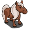animal_pony_icon
