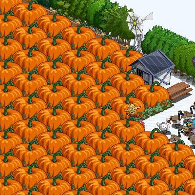 Super Pumpkin dalla Fattoria di Clio