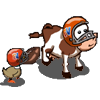 football_footballcow_icon