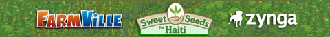 sweet_seeds_for_haiti