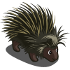 animal_porcupine_icon