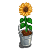 deco_bucketsunflower