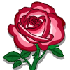 flower_fire_ice_rose_icon