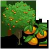 tree_clementine_icon