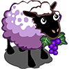 Grape Sheep