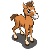 Autumn Foal