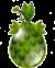 Deepforest Egg
